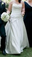 Beautiful Timeless Dress